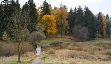 Великолепный парк в Межево осбенно красив осенью. Фото Анастасии Вереск