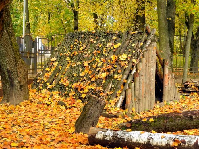 Осень в парке музея Шмырева