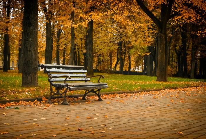 Анонс: «Витебский листопад», который даст городскому искусству возможность «высказаться»