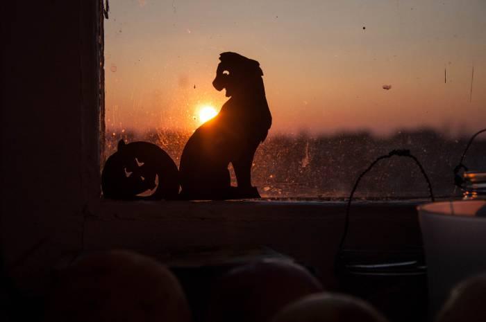 После захода солнца страшные истории звучат интереснее. Фото Анастасии Вереск