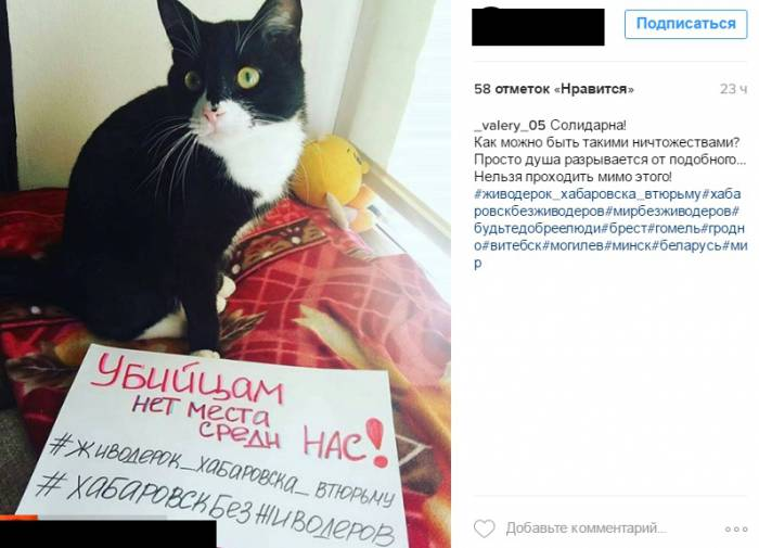 Сообщение в социальной сети Instagram