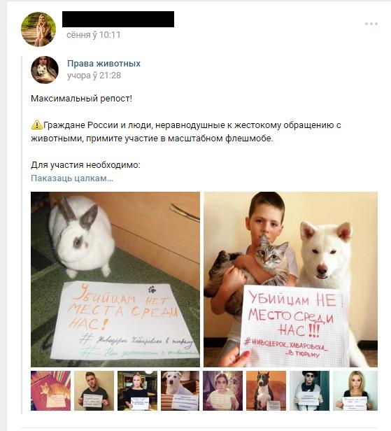 Сообщение в социальной сети Вконтакте