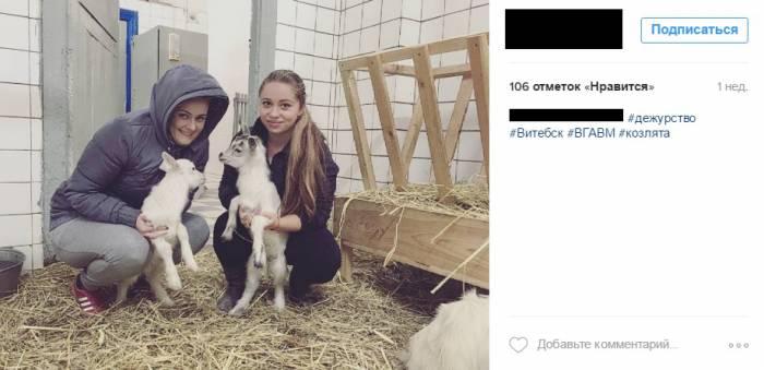 Судя по фотографиям в социальных сетях, студенты Ветеринарной академии к животным относятся с любовью