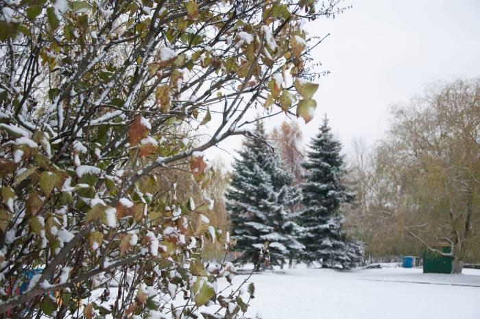 Раньше люди боялись долгой зимы и жестоких морозов. Фото Анастасии Вереск
