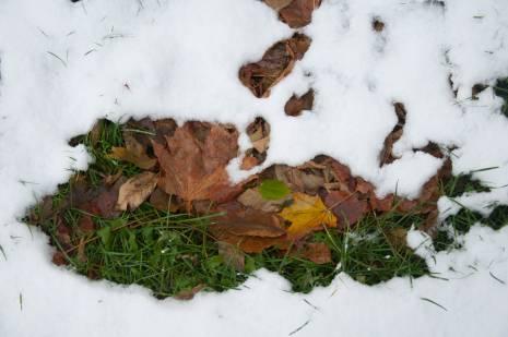 Осень все еще борется за власть над погодой. Но безуспешно. Фото Анастасии Вереск