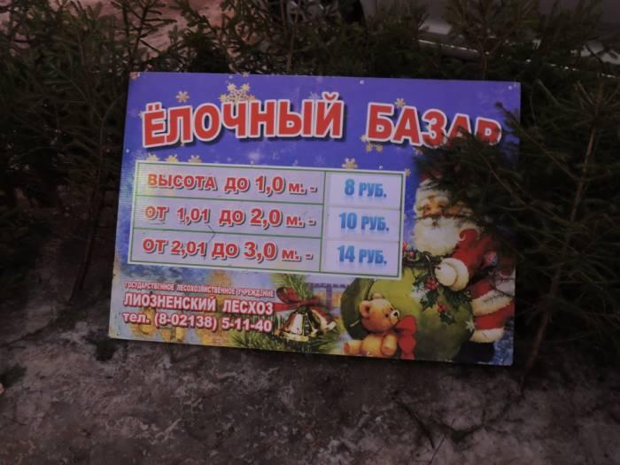 витебск, елки, цены