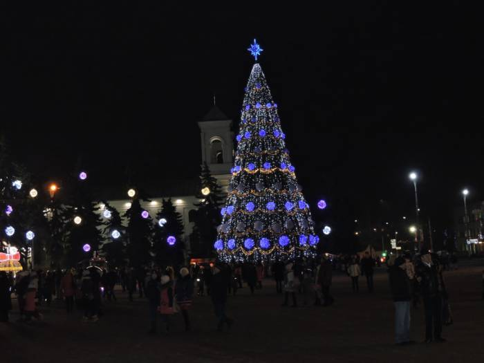 брест, новый год, елка
