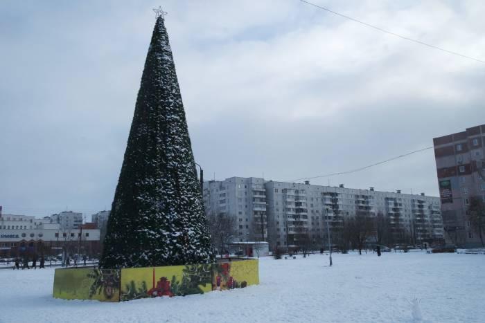 Пятиконечная звезда украшает ёлку на проспекте Строителей. Фото Анастасии Вереск