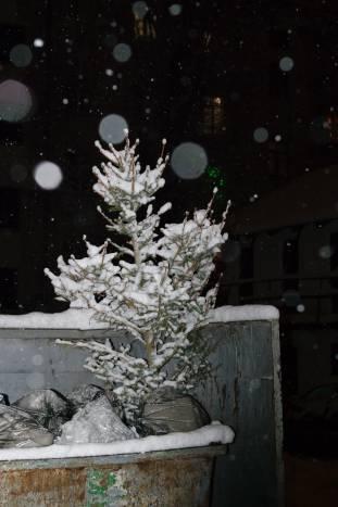 Призрак Нового года на витебской помойке. Фото Анастасии Вереск