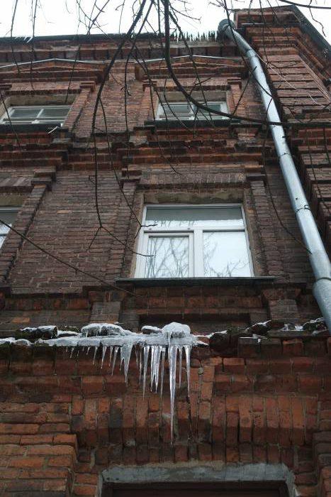 Опасная красота на улице Чехова. Фото Анастасии Вереск