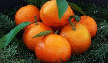 mandariny1