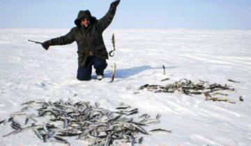 rybalka-zimoj