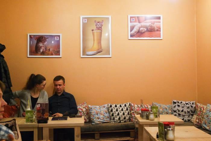 Интерьер кафе тоже в кошачьем стиле. Фото Анастасии Вереск