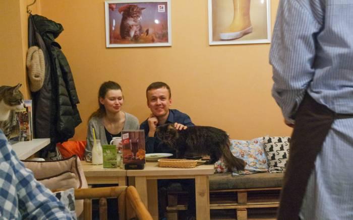 Без кота тут никак. Фото Анастасии Вереск