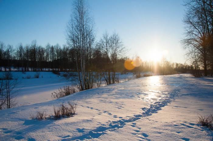 Мороз и солнце... Фото Ольга Витебская