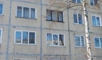 Подкармливаем уток прямо из окна. Фото Анастасии Вереск