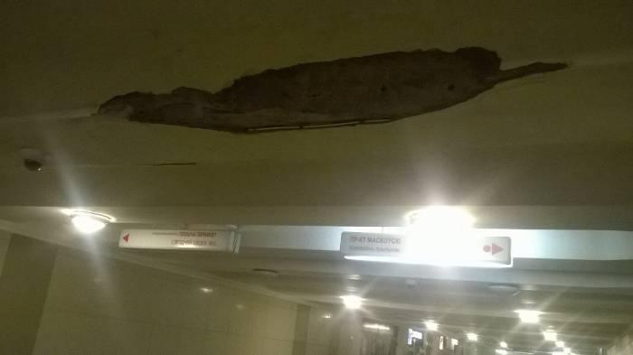 Трещины на потолке. Фото Анастасии Вереск