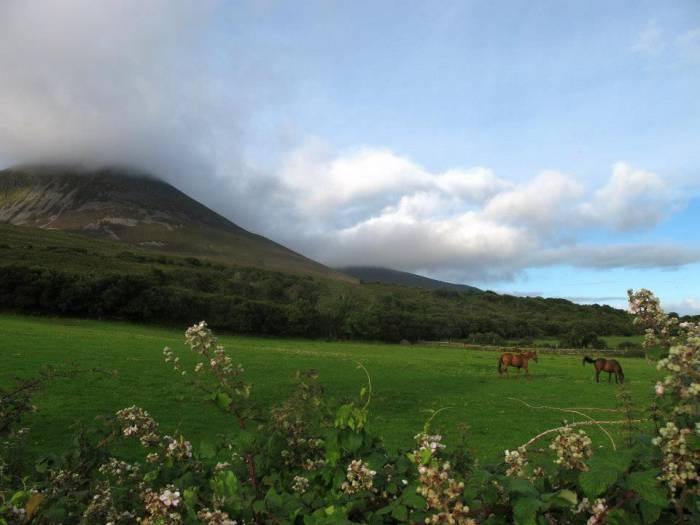 Ирландия. Фото из архива Марии