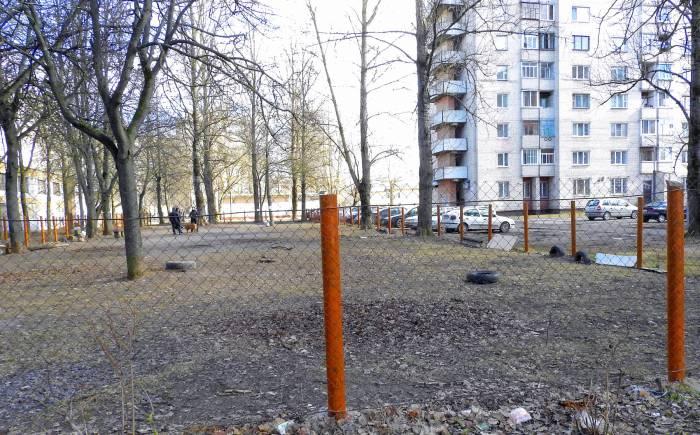 площадка для собак