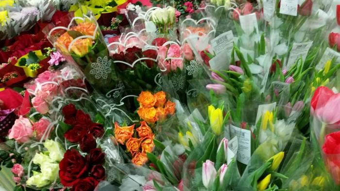 """Цветочный рай от """"Евроопта"""". Фото: Аля Покровская"""