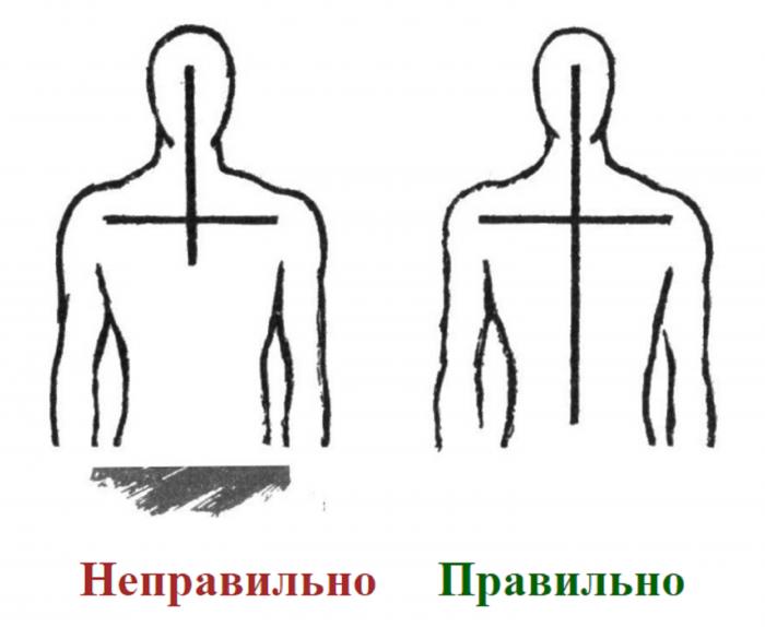 Фото: http://sv-olga.prihod.ru/articles/view/id/6071