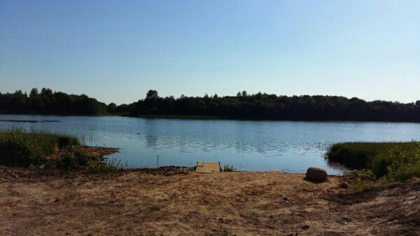 Озеро летом. Фото читателя