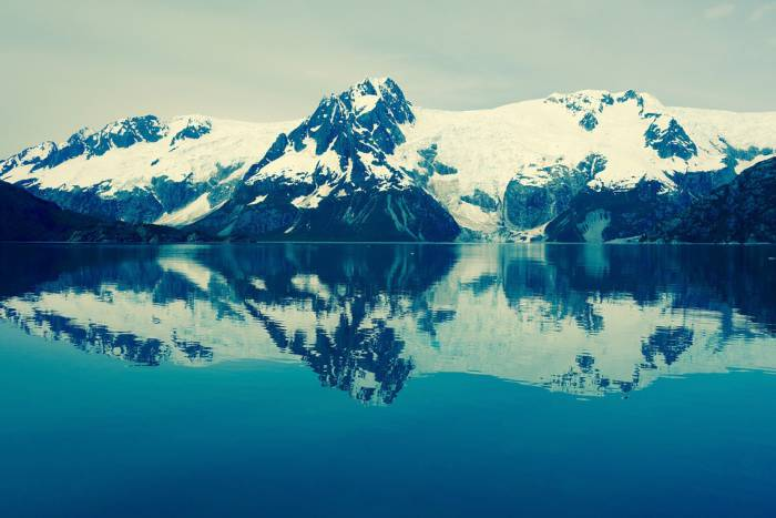 Арктика / Антарктика