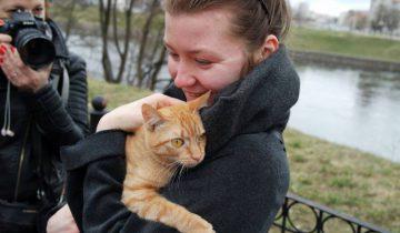 Этот котик поедет домой. Фото Анастасии Вереск