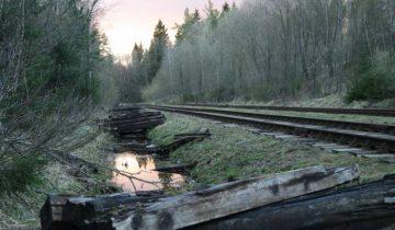 Орша, Кобыляцкая гора, репрессии