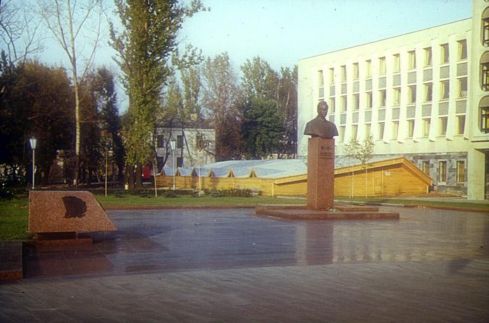 Временный навес над раскопом 1982 года, предназначенным для музеефикации. Фото evitebsk.com