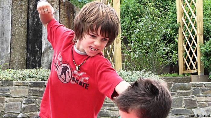 Фото vottak.net