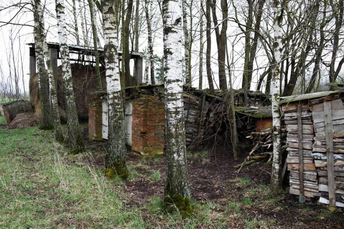 Расположенные неподалеку хозяйственные пристройки частично состоят из такого же красного кирпича. Фото Анастасии Вереск
