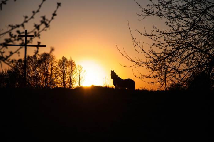 Во всем мире день летнего солнцестояния считается временем волшебства и магии. Фото Анастасии Вереск