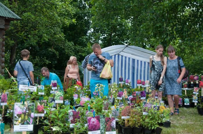 Для любителей сада и огорода разбили настоящий цветник. Фото Анастасии Вереск