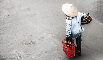 вьетнам эмиграция