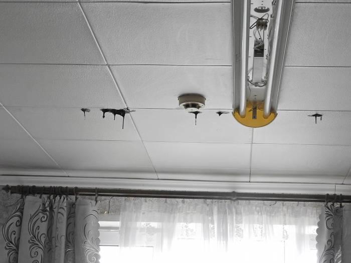 На потолке жилой комнаты видно, каким составом обрабатывают крышу. Фото Светланы Васильевой