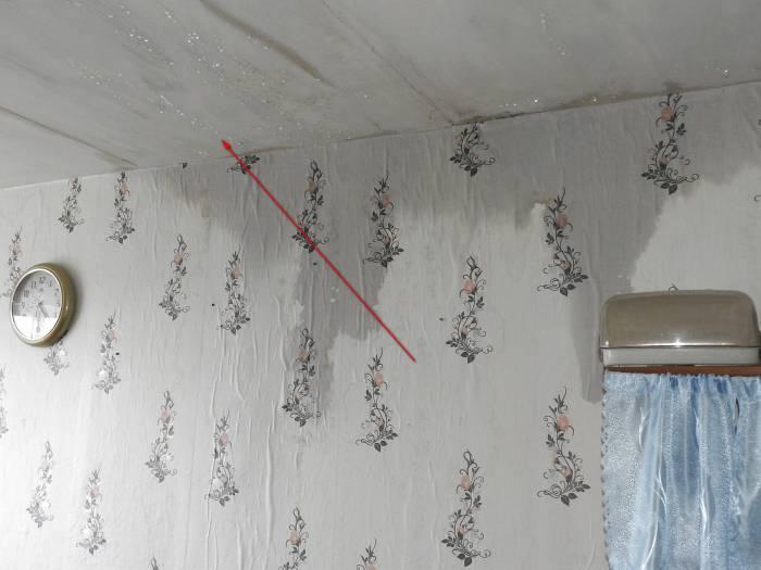 В потолочных перекрытиях скопилась вода. Фото Светланы Васильевой