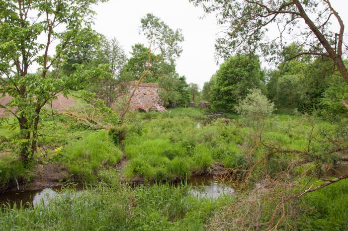 Руины почти полностью заросли зеленью. Фото Анастасии Вереск