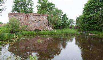 Мельница в деревне Папшичи. Фото Анастасии Вереск