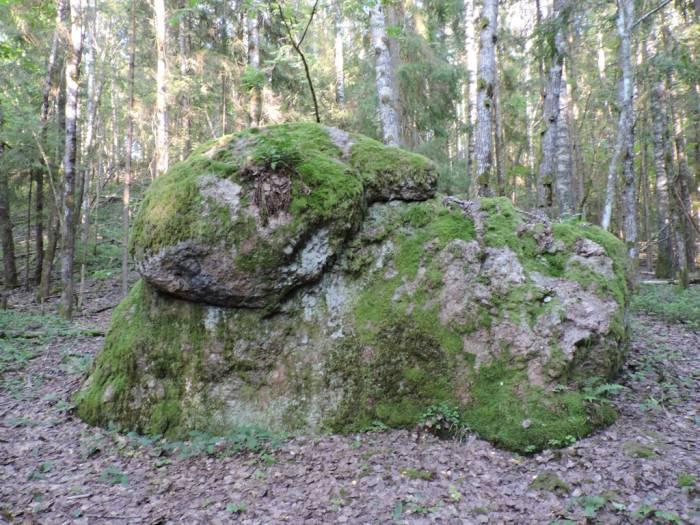 лепель, камень, огромный