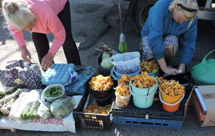 витебск, рынок, смоленский, ягоды, грибы, цена