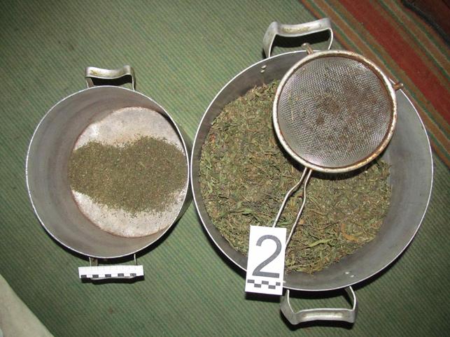 полоцк марихуана