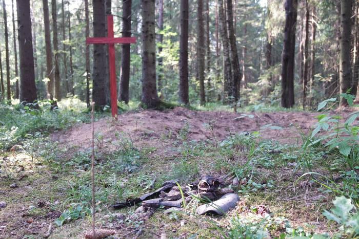 На месте захоронений ведутся раскопки. Фото Ольга Витебская