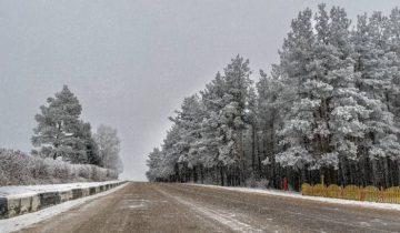 дорога шумилино зима