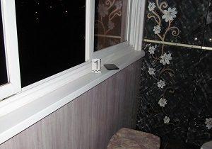 орша школьница окно