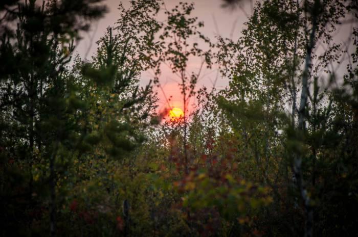 Закатное солнце. Фото Анастасии Вереск