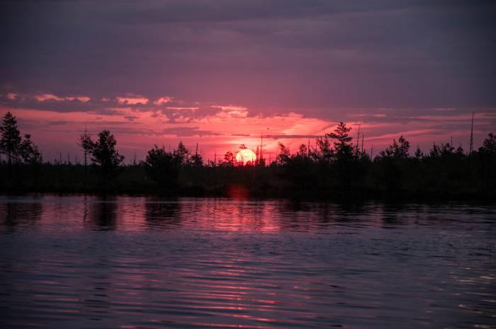 Рассвет над болотом. Фото Анастасии Вереск