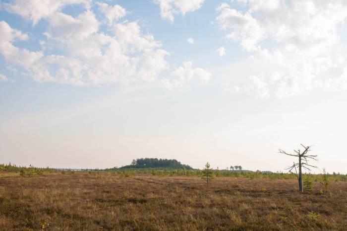 Вид на озеро Ельно, его площадь - 5, 42 километров квадратных. Фото Анастасии Вереск