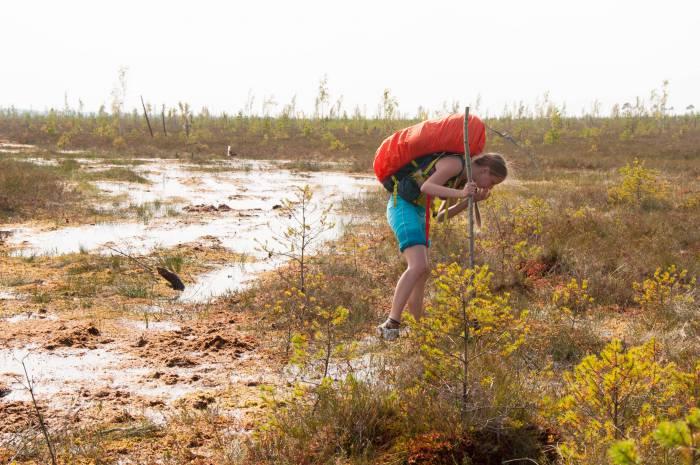 Клюква постоянно отвлекает в пути. Фото Анастасии Вереск