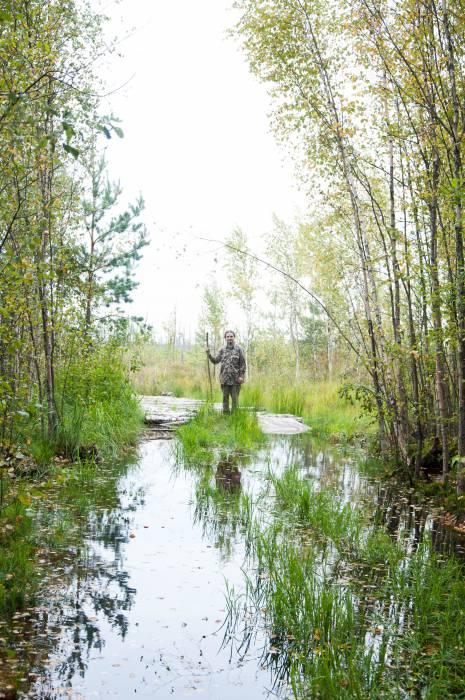 Выход из лесного массива к болотам Ельни. Фото Анастасии Вереск